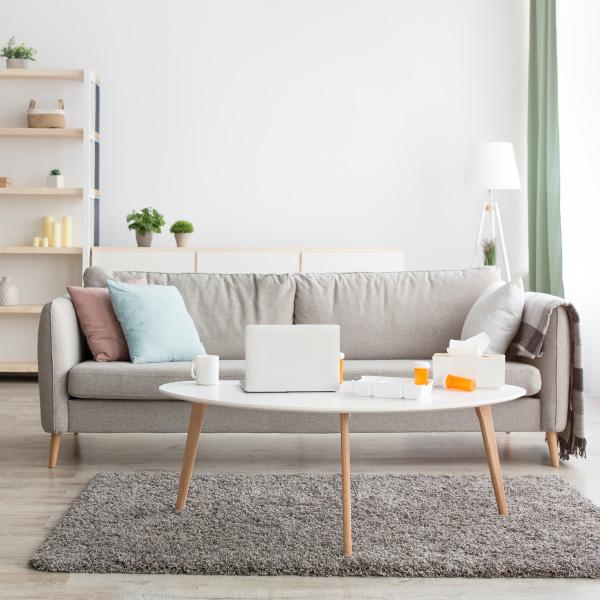 Cómo limpiar alfombras en tu casa